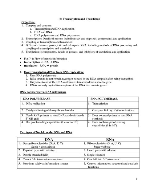 18 Best Images Of Dna Translation Worksheet  Dna Transcription And Translation Worksheet, Dna