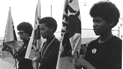 The Black Panthers Vanguard Revolution