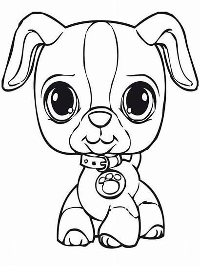 Coloring Pet Littles Littlest Popular