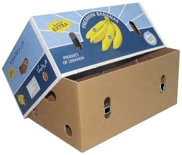 vegetable storage banana packaging boxes banana export quality box