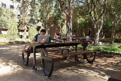 Study Outside Ucla Hall Outdoor Areas Facilities
