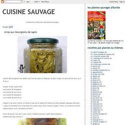 cuisine sauvage couplan sirop pearltrees