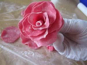 Fondant Figuren Selber Machen : rosen selber machen aus marzipan marshmallow fondant mit eigenen h nden ~ Frokenaadalensverden.com Haus und Dekorationen