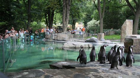 Pavilion Of Penguins