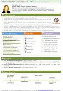 resume format for business analyst profile summary free resume sles free cv template download free cv sle senior executive resume sle