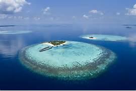Las Islas Maldivas ser  n una reserva de biosfera protegida por la      Atoll Island Definition