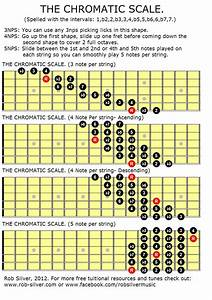 Rob Silver  Chromatic Scales For The Guitar