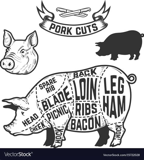 Pork Cuts Butcher Diagram Design Element For Vector Image