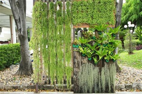 The Best Plants For A Vertical Garden