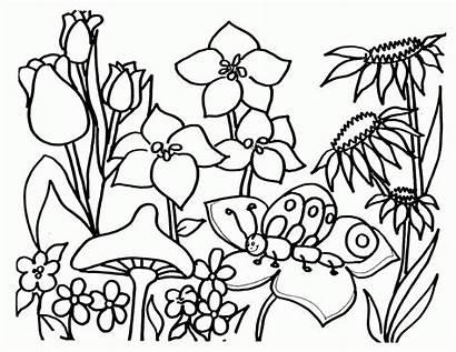 Coloring Flower Garden Adults Popular