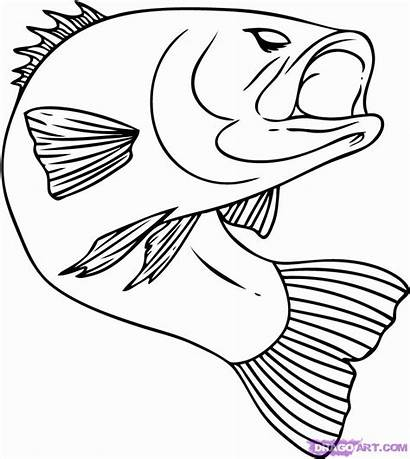 Fish Coloring Pages Jumping Popular Bass