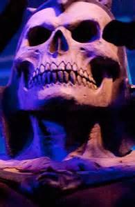 » Dr Skull Grailknights
