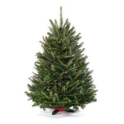best price real christmas tree real trees trees the home depot