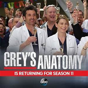 'Grey's Anatomy' season 11 spoilers: Will Derek and ...