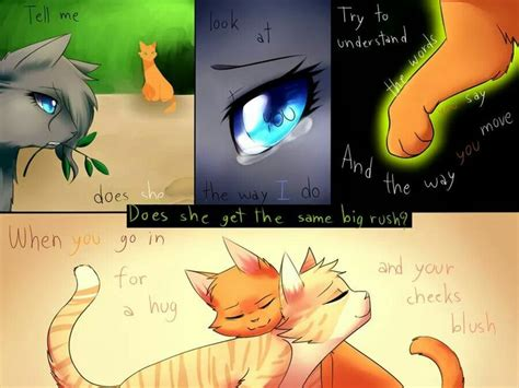 Warrior Cats Sandstorm Drone Fest