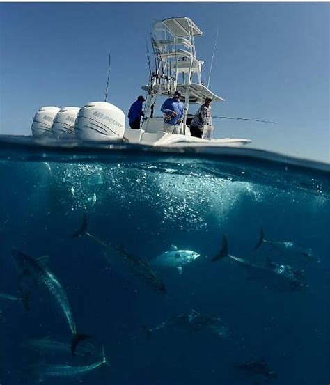 Offshore Fishing Boats For Sale Bc by Best 25 Fishing Boats Ideas On Pinterest Boats