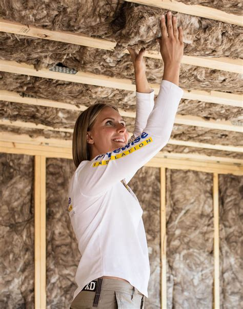 earthwool ceiling batts pricewise insulation