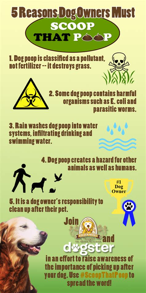 clean  atlanta dirty work dog waste removal service