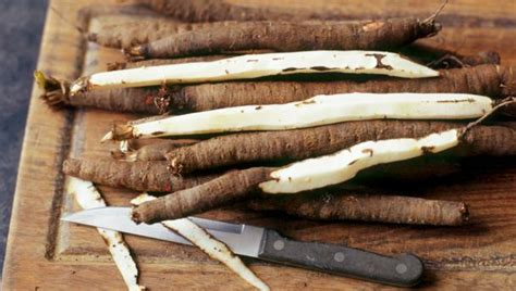 bbc food salsify recipes