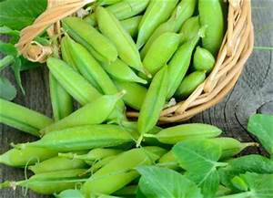 Coltivare Peperoncino In Casa Coltivare Facile Guida Caroldoey