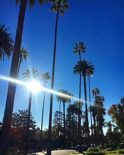 Angeles Los Visit Summer Hostelworld Sun Reasons