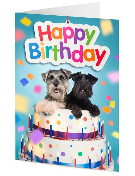 Birthday Cards For Pets Dogs