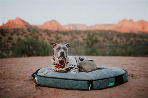 spruce travel dog bed dog milk