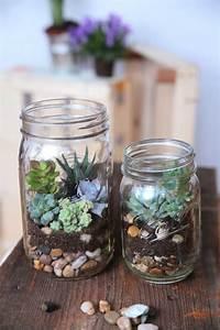 Sukkulenten Im Glas Pflanzen : ball mason glas wide 950 ml ~ Eleganceandgraceweddings.com Haus und Dekorationen