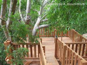 Deck with Tree Treehouse