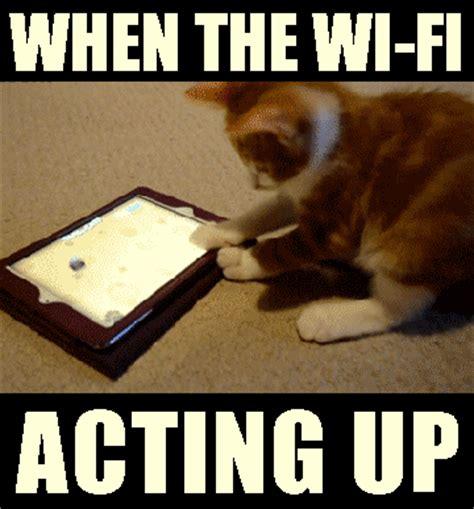 Wifi Meme - top wifi memes that totally define our feelings tell me nothing