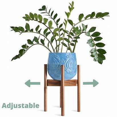 Plant Adjustable Stand Wooden Century Indoor Mid