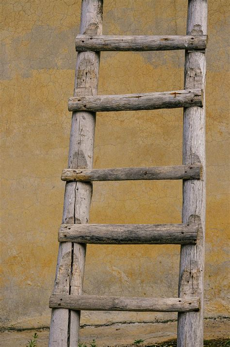 rustic wooden ladder photograph by heba edward