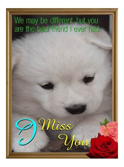 Miss Friend Card Cards Greetings Ecard Send