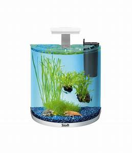 Tetra Aquaart Explorer Line : tetra aquaart led explorer line crayfish 30 liter wei dehner ~ Watch28wear.com Haus und Dekorationen