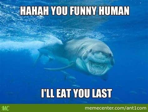 shark quotes quotesgram