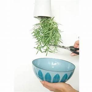 Boskke Sky Planter : boskke sky planter mini boskke superstudio ~ Orissabook.com Haus und Dekorationen