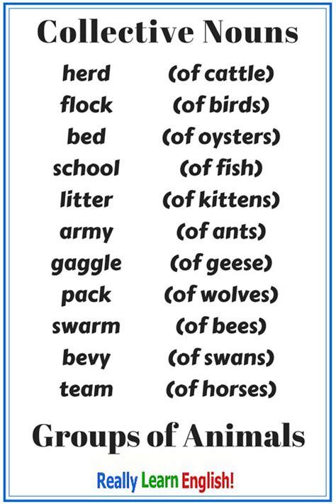Collective Nouns (group Nouns