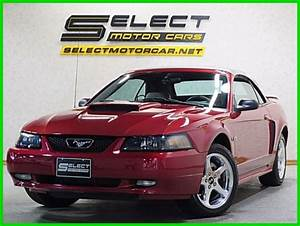 "02 FORD MUSTANG GT V8 CONVERTIBLE ""PREMIUM""--""5 SPEED""--""LEATHER"""