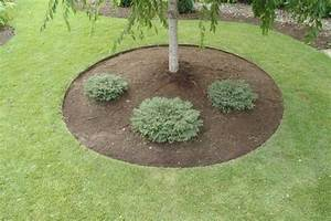 Landscape Edging Idea Tree Landscaping Gardening Idea Beautiful Trex Pergola Design