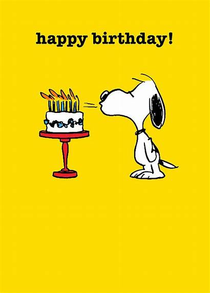 Snoopy Birthday Happy Cake Cards Candles Wish