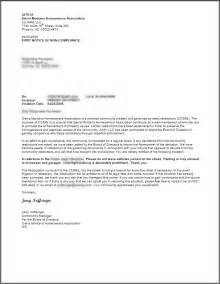 Debt Collection Demand Letter Sample