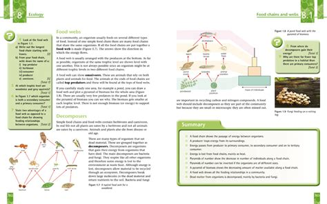 all worksheets 187 igcse chemistry worksheets with answers