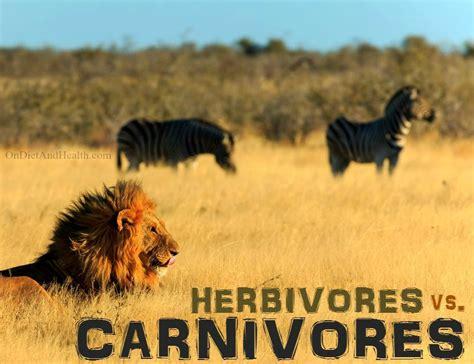 Herbivores Vs Carnivores