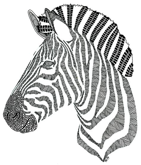 Zebra Head Template Wwwpixsharkcom Images Galleries