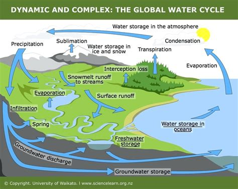 The Water Cycle Diagram Pdf by Hydrological Cycle Diagram Worksheet World Of Reference