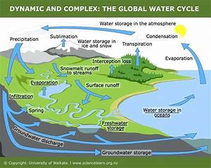 Diagram  Complicated Water Cycle Diagram