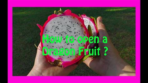 how to cut dragon fruit how to cut and eat fruit