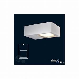 Applique Exterieur Blanc : luminaire exterieur blanc conceptions de maison ~ Edinachiropracticcenter.com Idées de Décoration