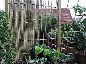 Rankgitter Selber Bauen : gestalten mit bambusst ben gartentipps garten bambus und garten ideen ~ Frokenaadalensverden.com Haus und Dekorationen