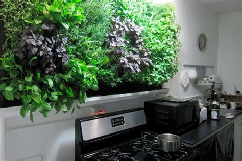 Vertical Herb Garden In Your Kitchen by Indoor Vertical Herb Garden In The Kitchen Reclaim Grow